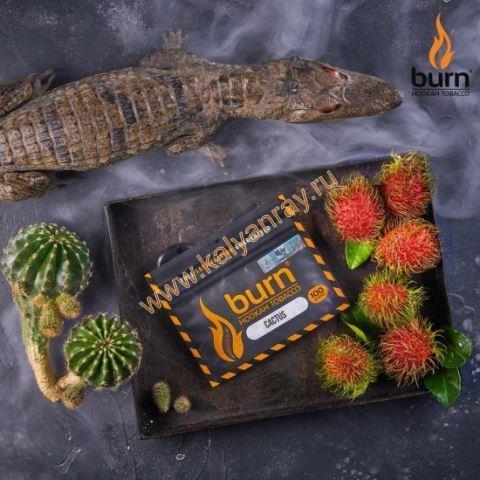 Burn Cactus