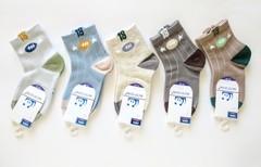 Носки для мальчиков  ( 10  пар) арт.008-2 (р. 15-20 )