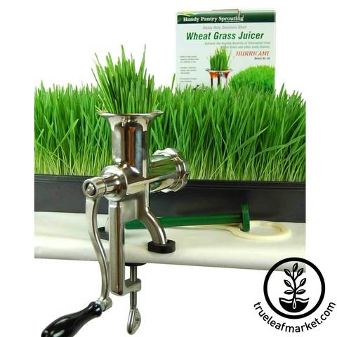 Соковыжималка ручная Wheatgrass Juicer BL-30
