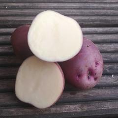 Картофель рассыпчатый Сиреневый Туман (1 кг).