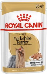 Royal Canin Yorkshire Terrier Adult  влажный корм паштет для взрослых собак породы йоркширский терьер от 10 месяцев