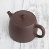 Исинский чайник Цзин Лань 260 мл #P 19