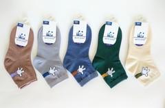Носки для мальчиков  ( 10  пар) арт.008-1 (р. 21-26 )