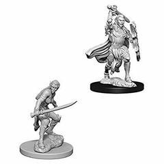 Female Elf Fighter / Эльфийки-воительницы