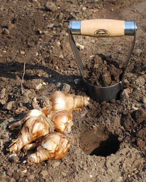 Посадочный инструмент DeWit  для луковиц, клубней и рассады цветов.