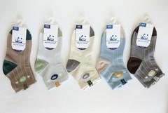 Носки для мальчиков  ( 10  пар) арт.008-2 (р. 21-26 )