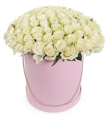 101 белая роза в шляпной коробке