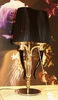 лампа Visionnaire Esmeralda by Ipe Cavalli  (черный, гофрированный)