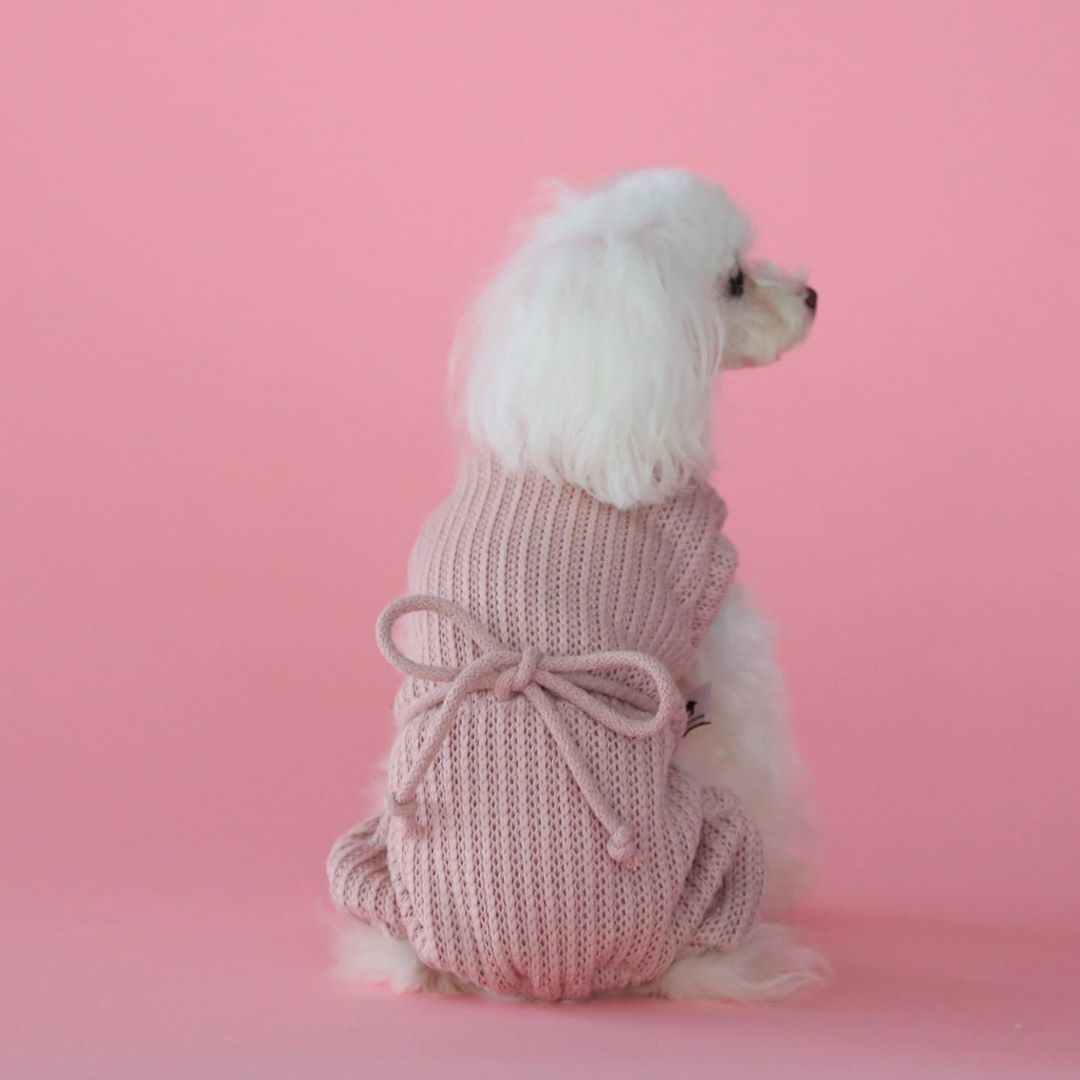 одежда для собак BorisHouse