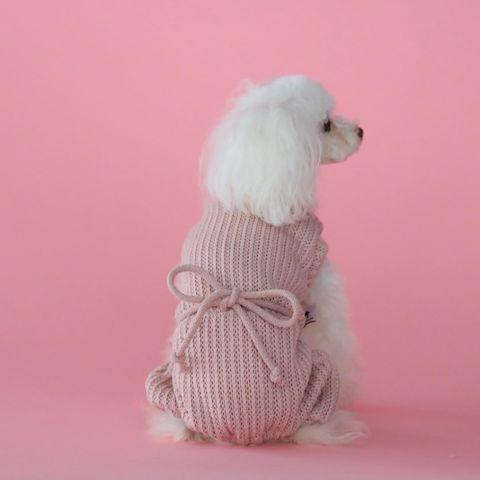 2194 BH - Вязанные костюмы для собак