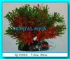 Растение Атман Q-110A, 20см
