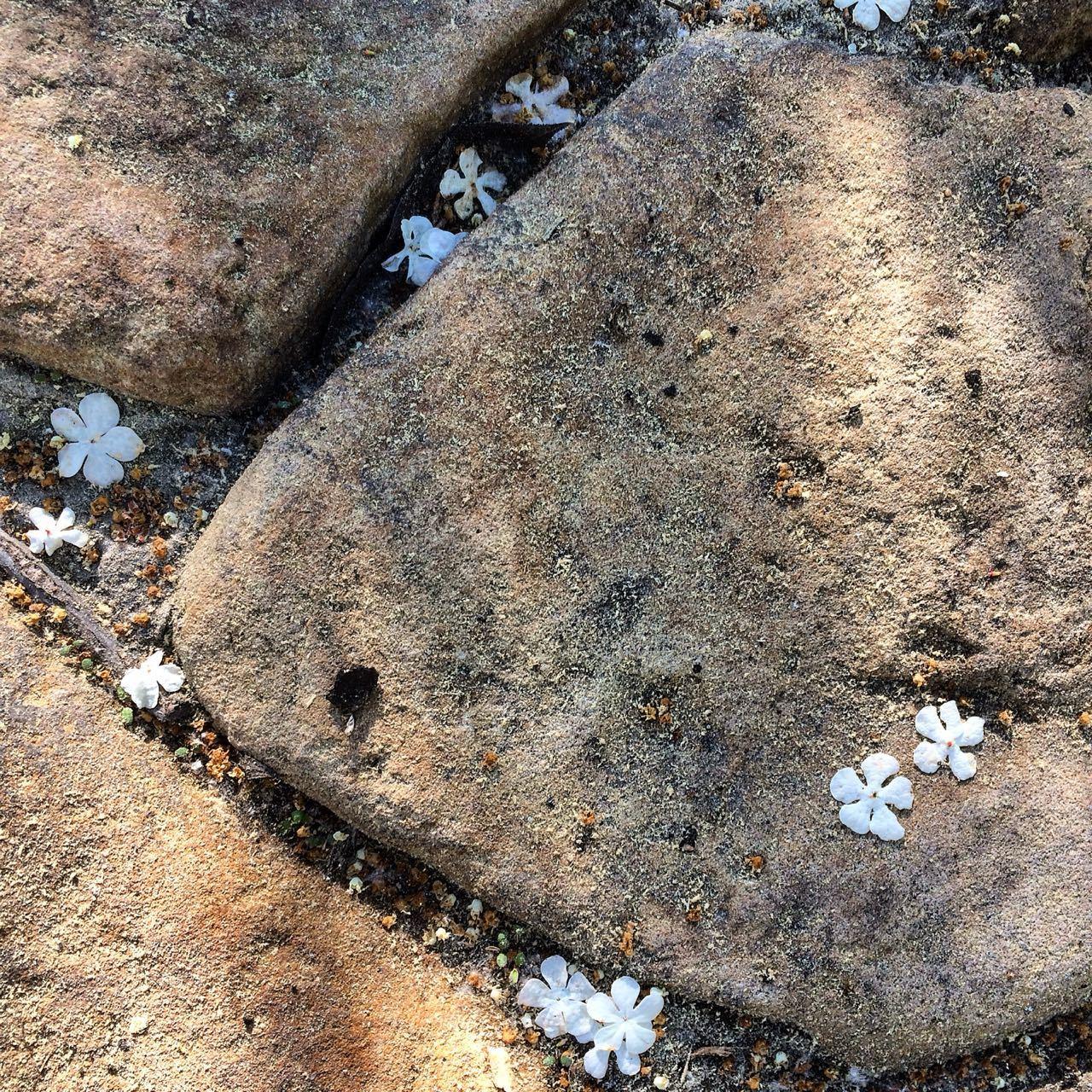 Шаговая дорожка камень речной Жёлто-серый