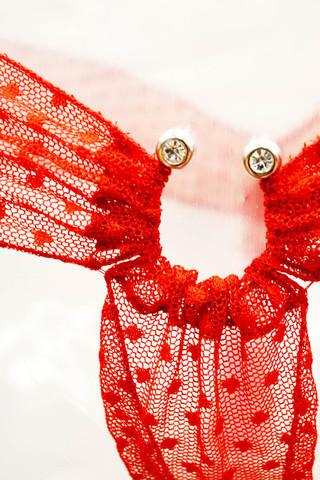 Комплект нижнего белья прозрачный красный
