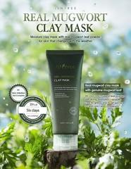 Очищающая маска с 6 видами глины и пудрой полыни, 100 мл / Isntree Real Mugwort Clay Mask