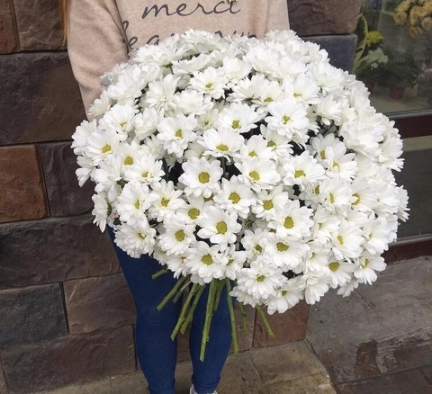 25 кустовых хризантем в оформлении #2759