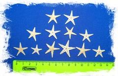 Сахарные морские звездочки 1 - 2 см