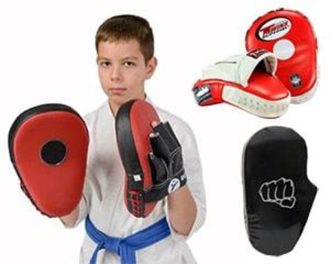 Купить лапы для бокса
