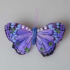 Бабочка 489678
