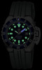 Купить Наручные часы Luminox A.1513 по доступной цене