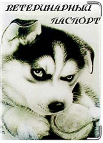 """Обложка для ветеринарного паспорта """"Хаски"""" (1)"""