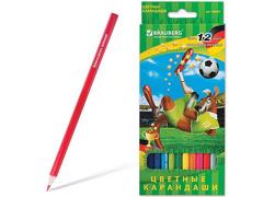 180534 карандаши цветные, заточенные