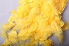 Перья желтые в пакете 10 гр.
