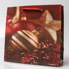 Пакет новогодний подарочный 16х16х7-5