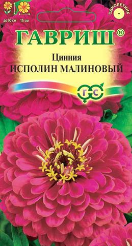 Семена Цинния Исполин малиновый, Одн
