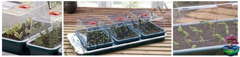 Пропагатор GARLAND Large High Dome Seed Cuttings с отверстиями
