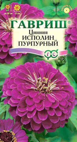 Семена Цветы Цинния Исполин пурпурный