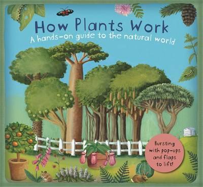 Kitab How Plants Work   Christiane Dorion