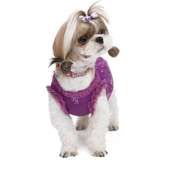 купить вечернее платье для собаки