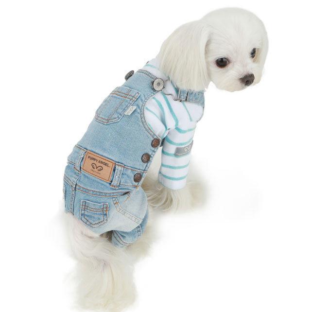 джинсы для собак