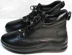 Купить высокие кеды женские кожаные Evromoda 375-1019 SA Black