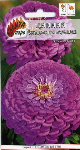 Семена Цветы Цинния Фиолетовая фея