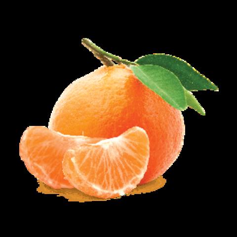 Купить табак для кальяна Fumari Mandarin Zest в Саратове