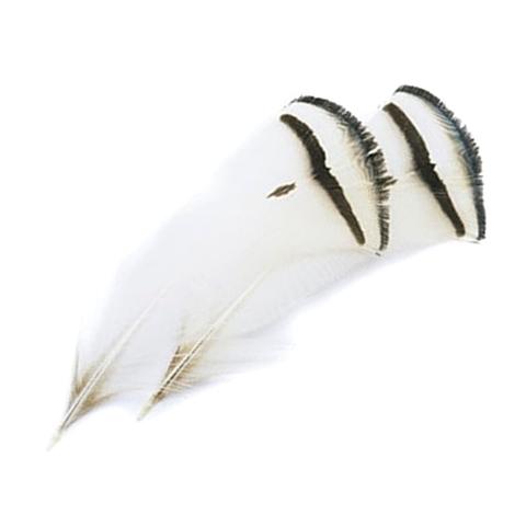 Шейные перья алмазного фазана Amherst Pheasant Tippets (10 шт)