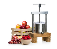 Прессовая соковыжималка Sana Fruit Press Mini