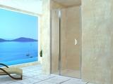 Душевая дверь RGW LE-04 120х195 06120412-11 прозрачное