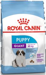 Royal Canin Giant Puppy для щенков очень крупных пород с 2 до 8 месяцев