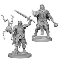 Pathfinder Deep Cuts Unpainted Miniatures - Human Male Cleric