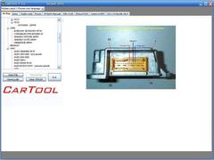 Фото Cartool 3.6