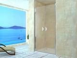 Душевая дверь RGW LE-06 90х195 06120609-11 прозрачное
