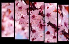 """Модульная картина """"Цветы вишни"""""""