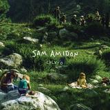 Sam Amidon / Lily-O (LP)
