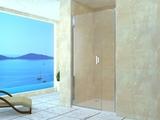 Душевая дверь RGW LE-08 (LE-03+Z-09) 120х195 06120812-11 прозрачное