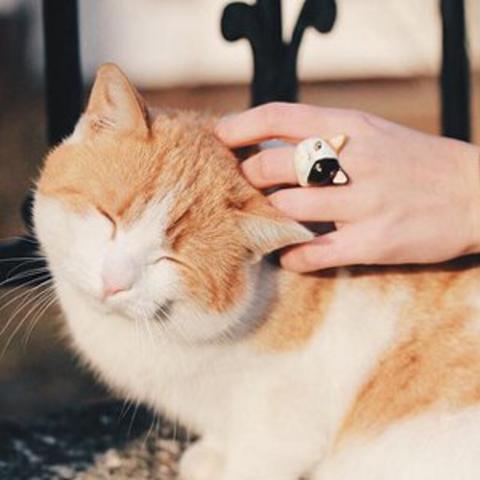 Кольцо Кошка (трехцветная)