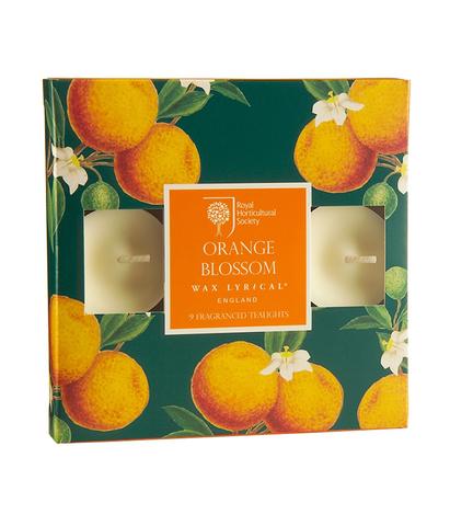 Набор ароматических чайных свечей Цветок апельсина, Wax Lyrical
