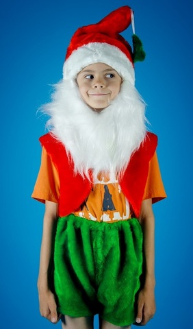 Карнавальный костюм Гномика 2