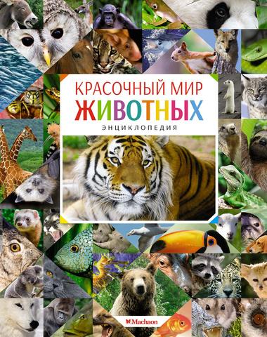 Красочный мир животных